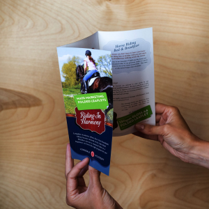 MASS MARKETING FOLDED LEAFLETS