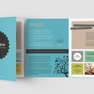 A6 Brochures (scored) - 4 Page Foldout