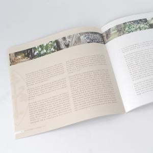 170 grams Silk Vierkante Brochures