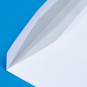 Unprinted Envelopes