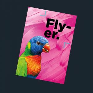 Flyer ou Fiche Eco