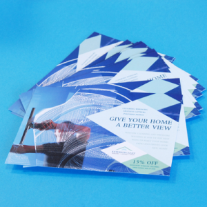Flyers: Gloss - up to 250