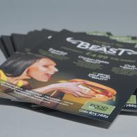 Digital 170gsm Silk Leaflets
