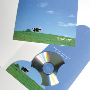 400gsm Matt Lam + Spot UV 2-Panel Media Folder