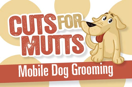 dog grooming business plan template uk