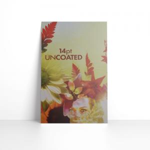 14PT Uncoated Postcards